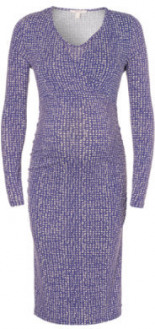 Umstands Still-Kleid Columbine bunt